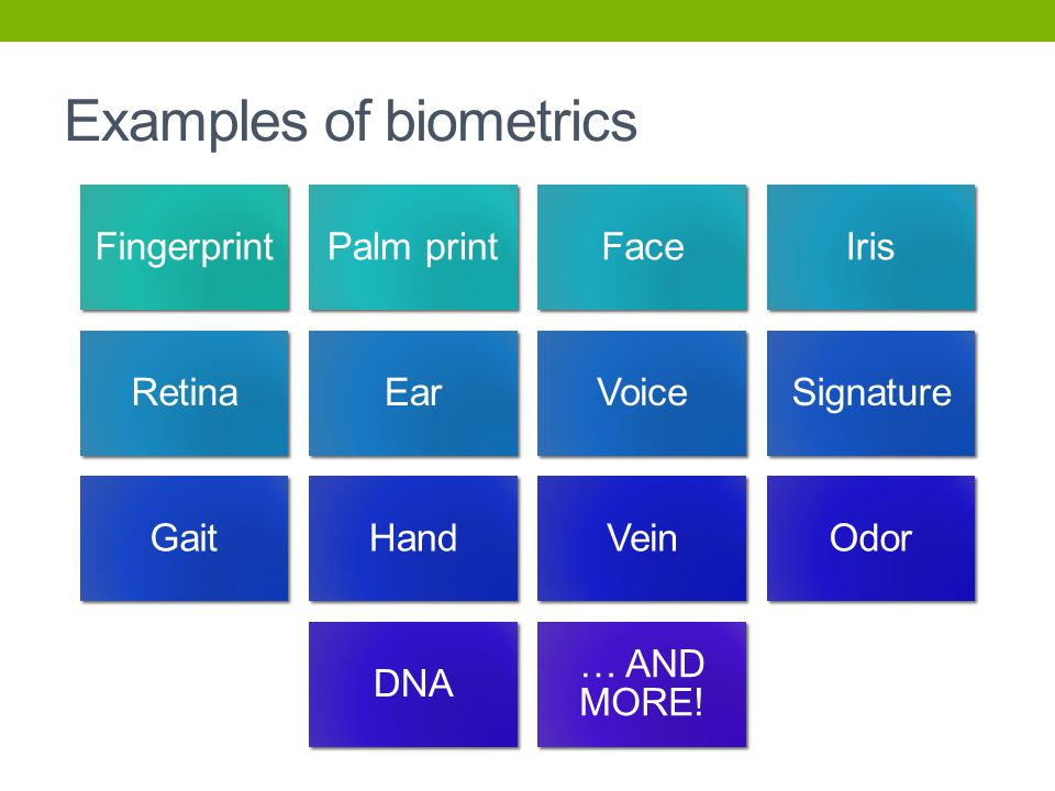 Examples of biometrics FingerprintPalm printFaceIris RetinaEarVoiceSignature GaitHandVeinOdor DNA … AND MORE!