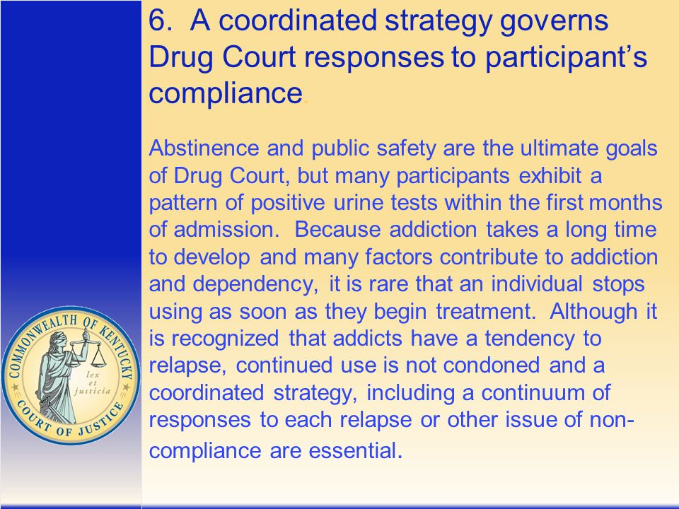 6. A coordinated strategy governs Drug Court responses to participant's compliance.