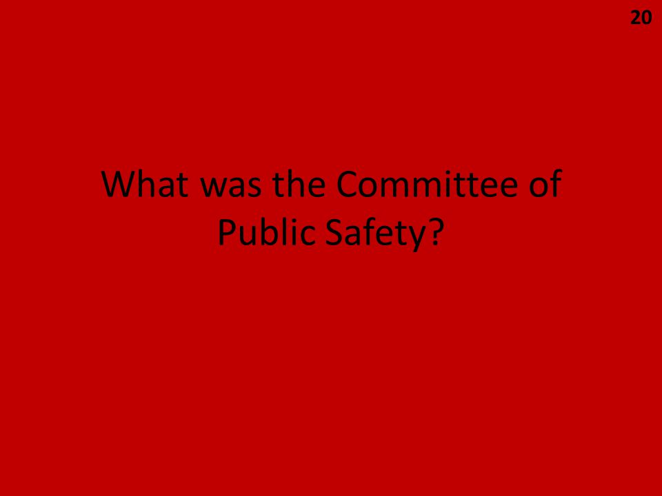 What was the Committee of Public Safety 20
