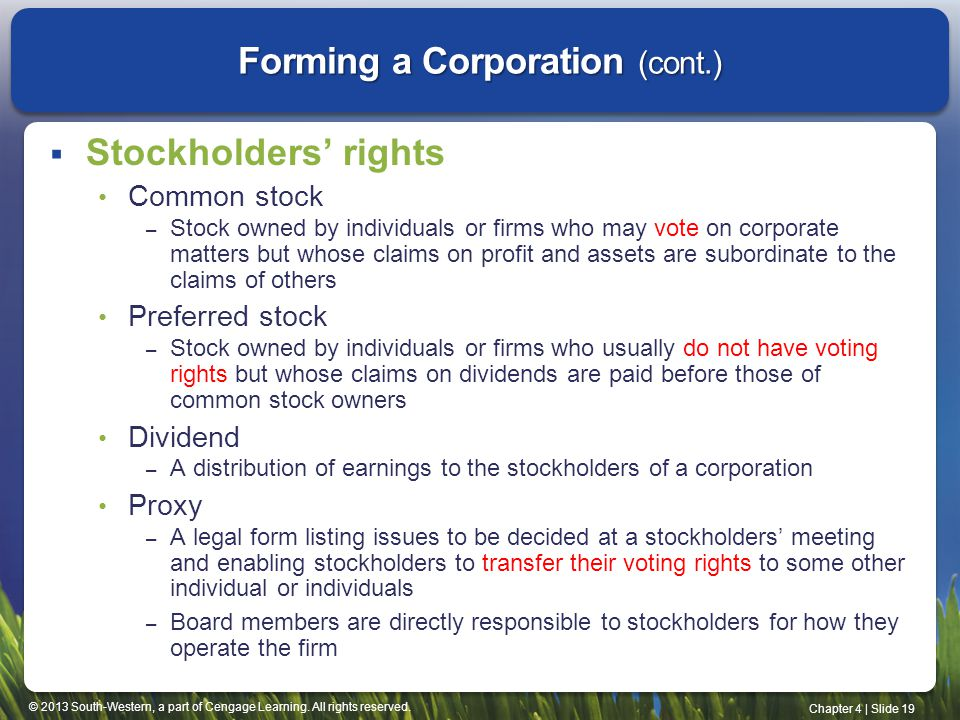 © 2013 South-Western, a part of Cengage Learning. All rights reserved. Chapter 4   Slide 19 Forming a Corporation (cont.)  Stockholders' rights Commo
