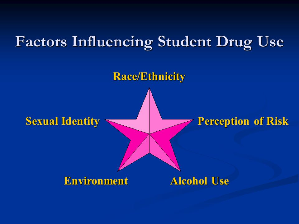 Factors Influencing Student Drug Use Race/Ethnicity Perception of Risk Sexual Identity Environment Alcohol Use