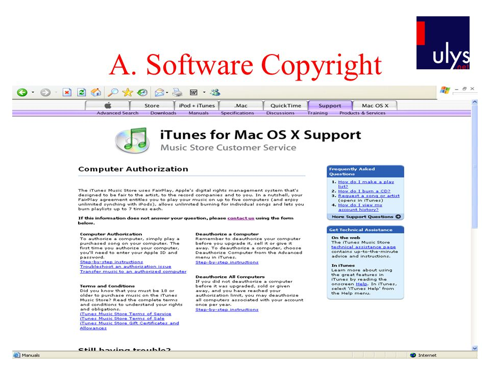A. Software Copyright
