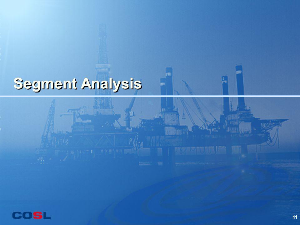 11 Segment Analysis