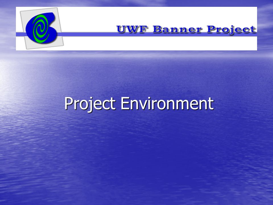 Project Environment