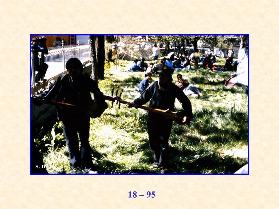 18 – 95 S. Diglio