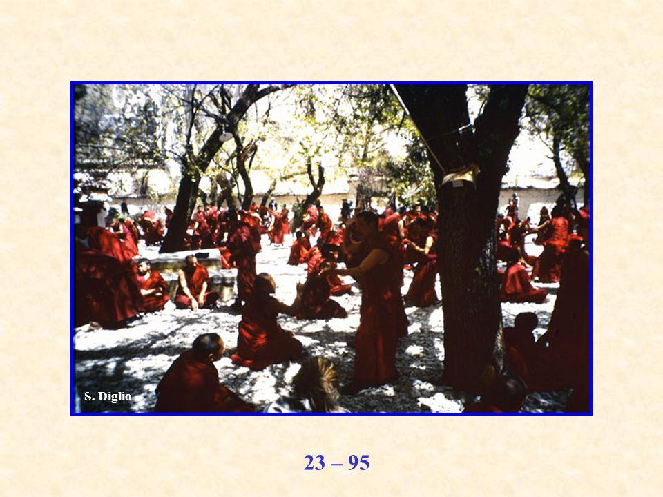 23 – 95 S. Diglio