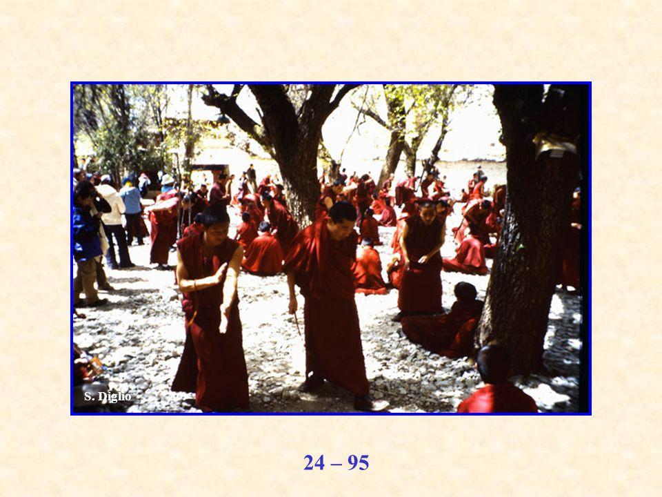 24 – 95 S. Diglio