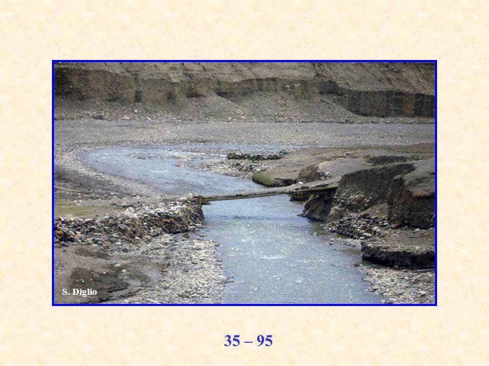 35 – 95 S. Diglio