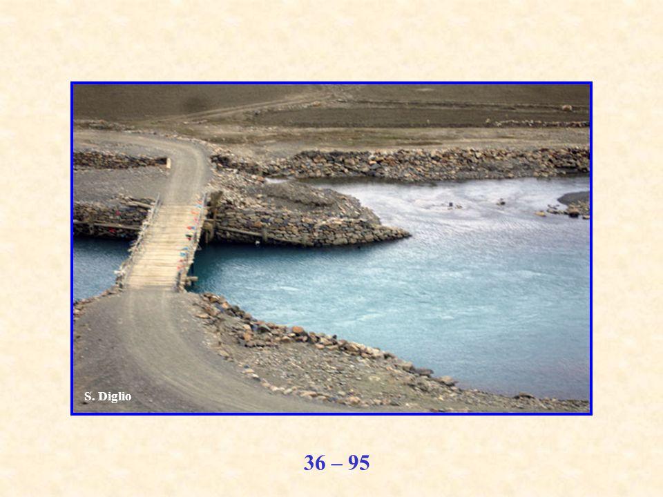 36 – 95 S. Diglio