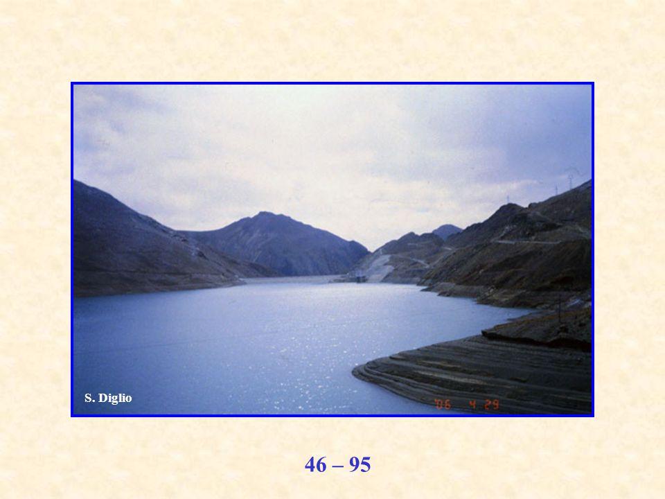 46 – 95 S. Diglio