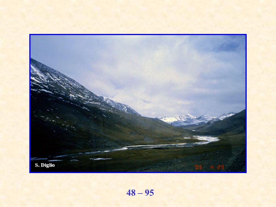 48 – 95 S. Diglio