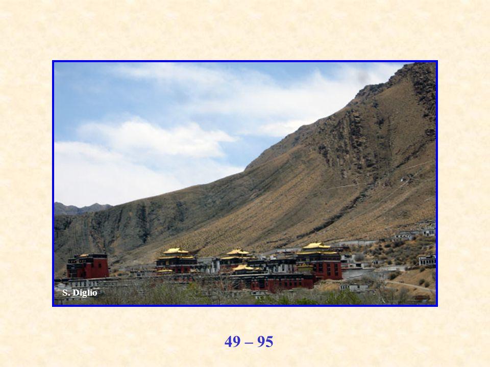 49 – 95 S. Diglio