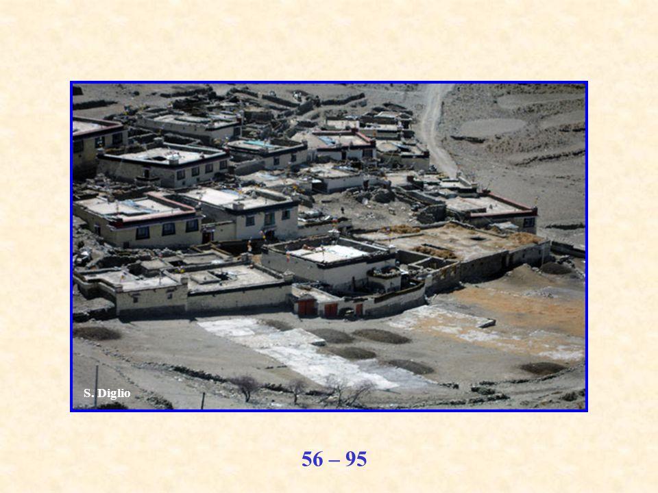 56 – 95 S. Diglio
