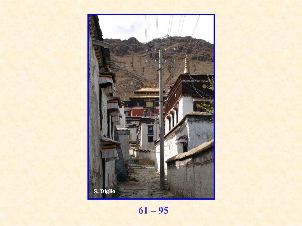 61 – 95 S. Diglio