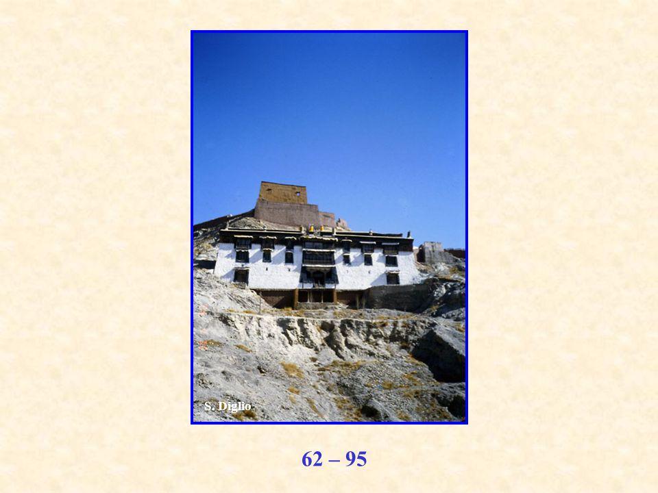 62 – 95 S. Diglio