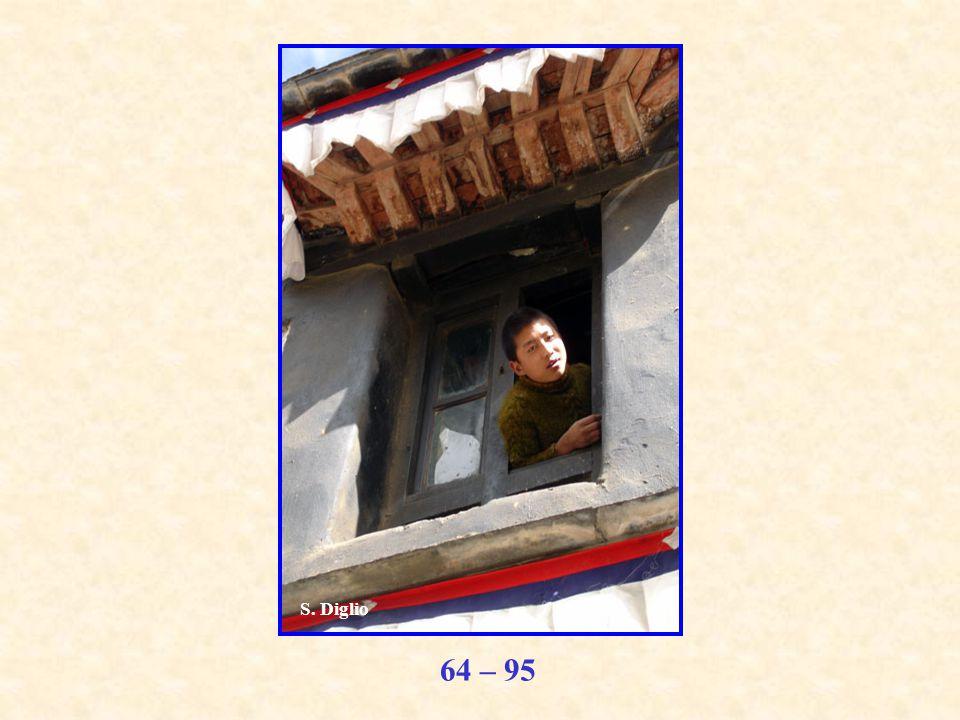 64 – 95 S. Diglio