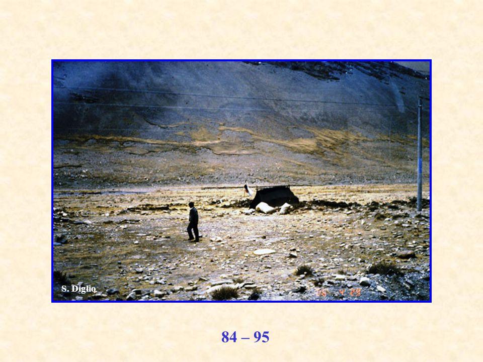 84 – 95 S. Diglio