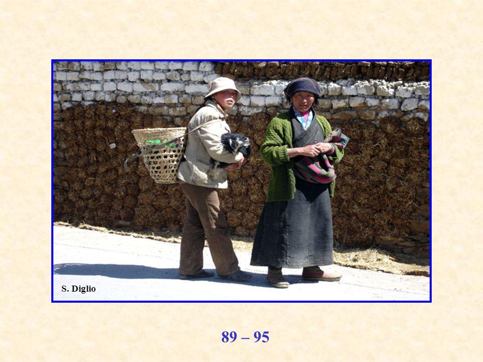 89 – 95 S. Diglio