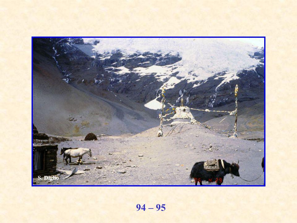 94 – 95 S. Diglio