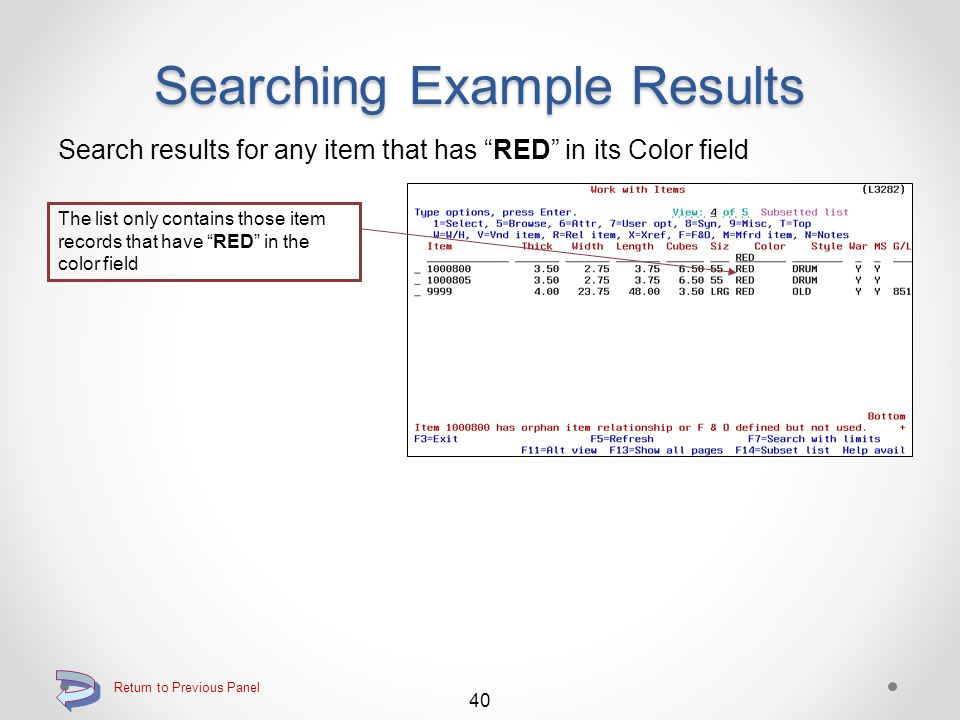 Searching Example Results Search results for any item that is a Catch Weight item The list only contains those item records that are catch weight items 39 Return to Previous Panel