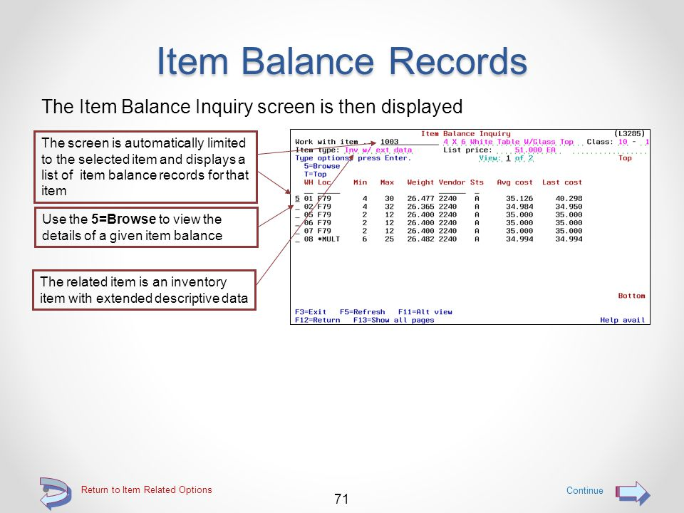 Item Balance Records Use the W option to access Item Balance inquiry Access Item Balance Inquiry by using the W=W/H option 70 Return to Item Related Options The Typ codes indicate what type of an item a particular item master is Continue Type codes may be: R = Regular item C = Class item G = Group item parent K = Kit parent X = Extended item description