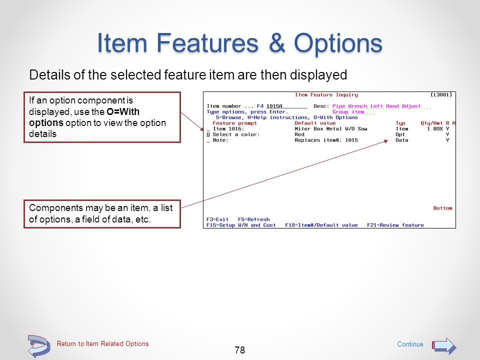 Item Features & Options The Item Feature Inquiry screen is then displayed The screen is automatically positioned with the selected item at the top of
