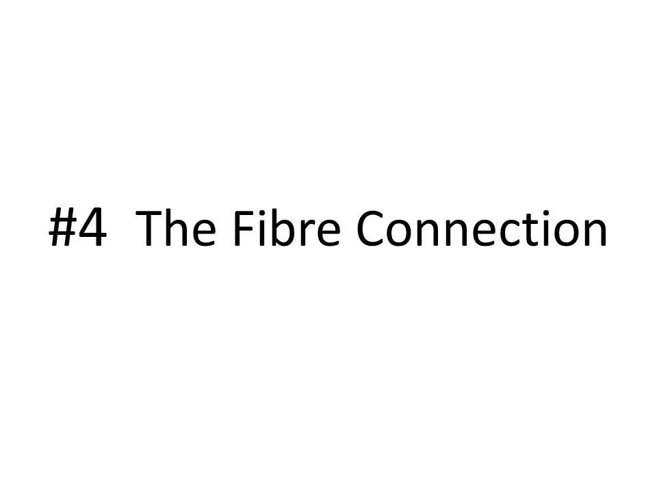 #4 The Fibre Connection