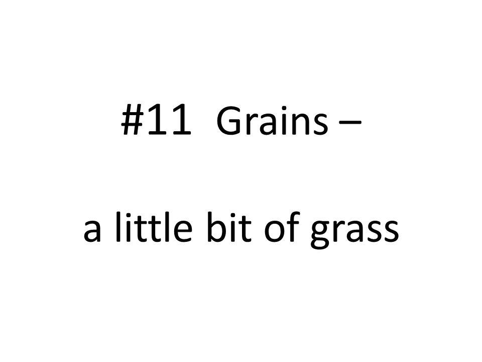 #11 Grains – a little bit of grass
