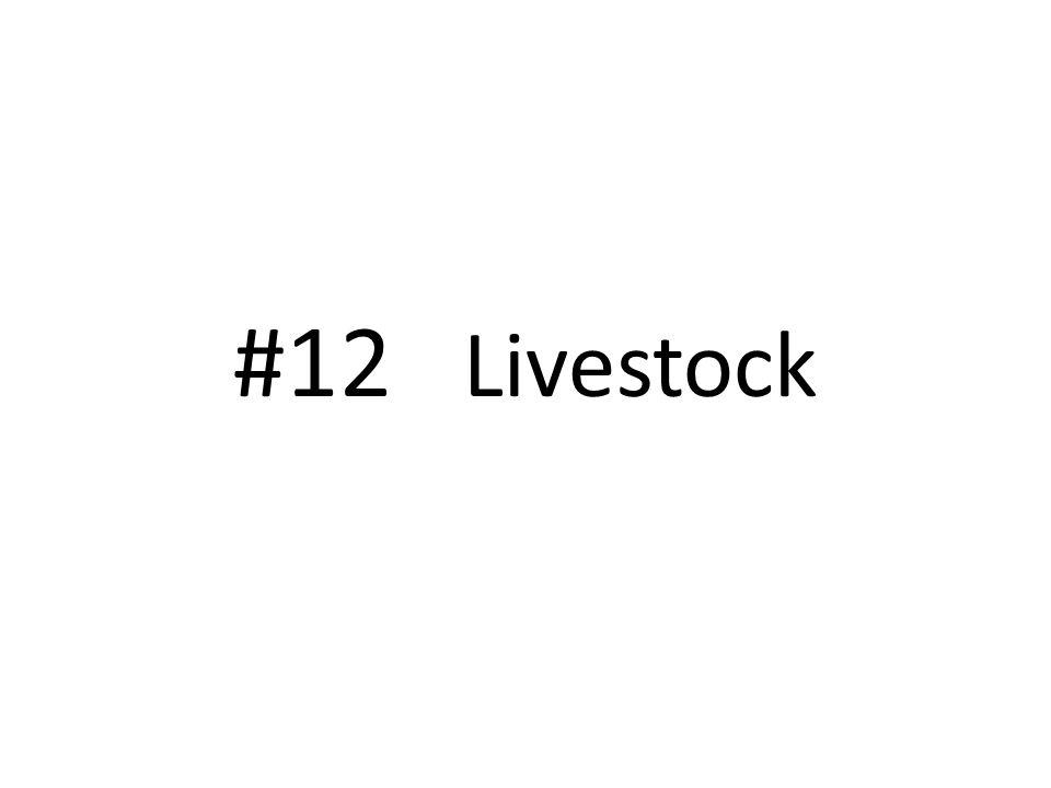 #12 Livestock