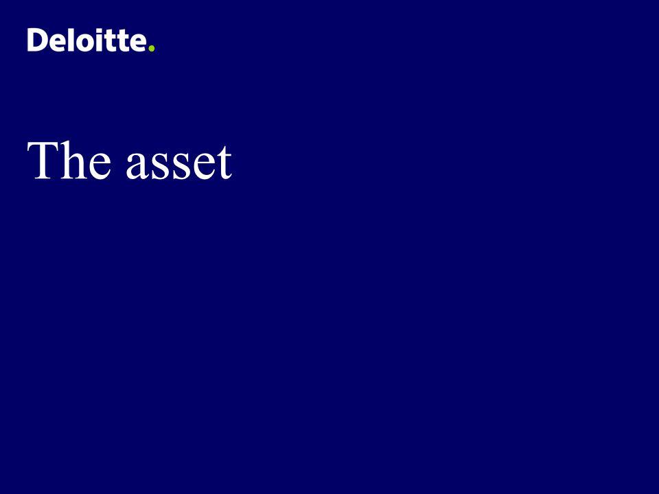 The asset