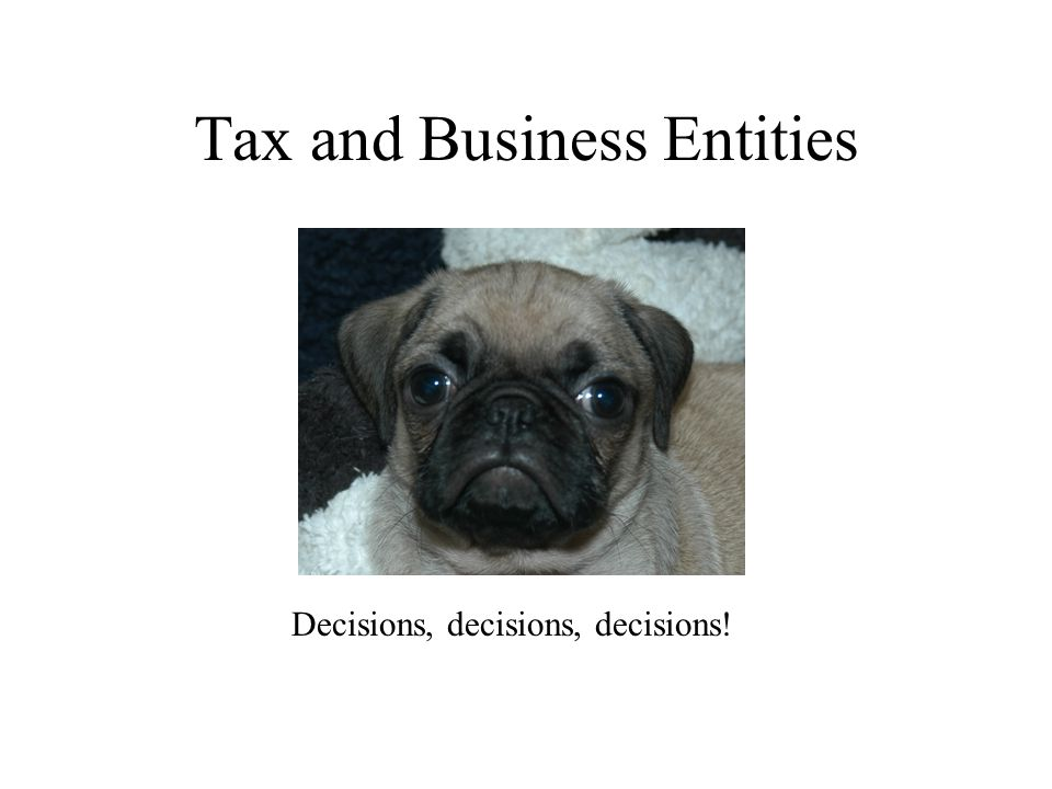 Tax and Business Entities Decisions, decisions, decisions!