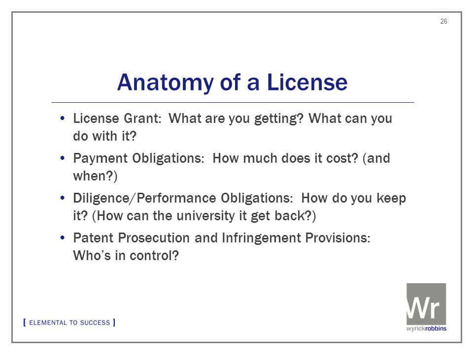 Anatomy of a License License Grant: What are you getting.