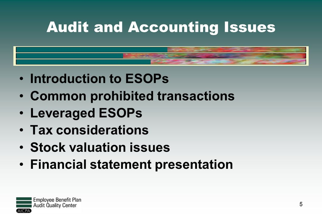 Audit and Accounting Issues Introduction to ESOPs Common prohibited transactions Leveraged ESOPs Tax considerations Stock valuation issues Financial s