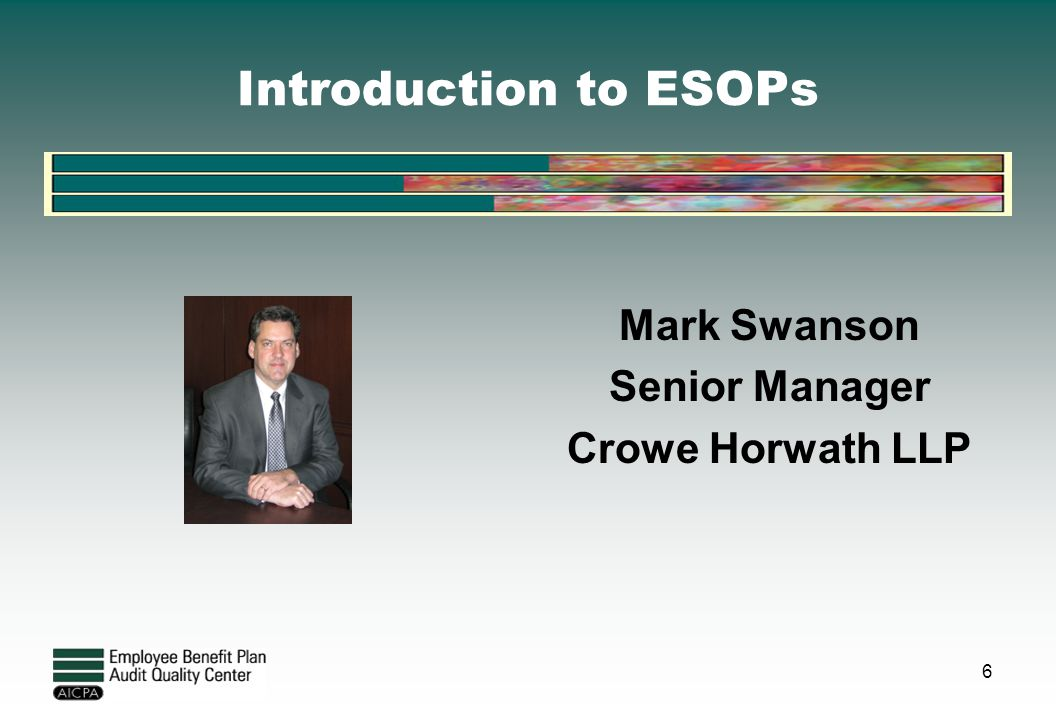 Introduction to ESOPs Mark Swanson Senior Manager Crowe Horwath LLP 6
