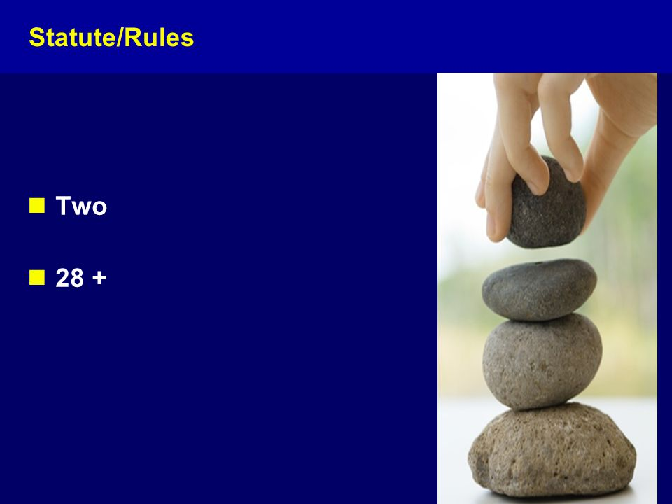 Statute/Rules Two 28 +