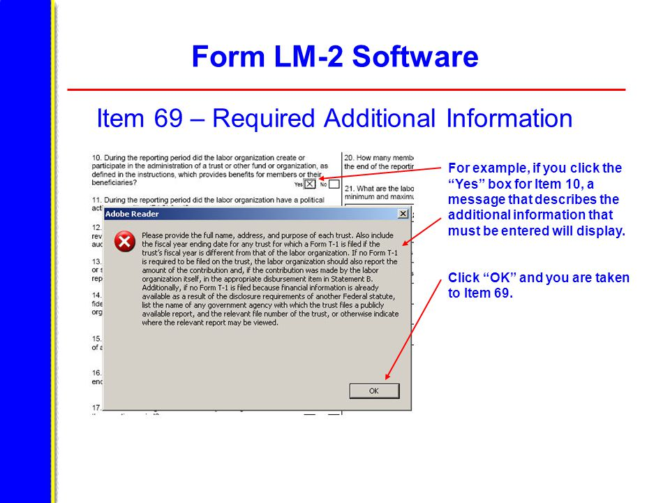 Form LM-2 Software Item 69 – Required Additional Information For example, if you click the Yes box for Item 10, a message that describes the additional information that must be entered will display.