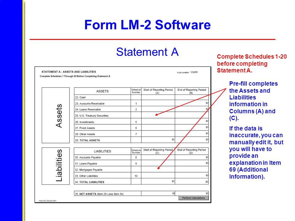 Form LM-2 Software Statement A Pre-fill completes the Assets and Liabilities information in Columns (A) and (C). If the data is inaccurate, you can ma
