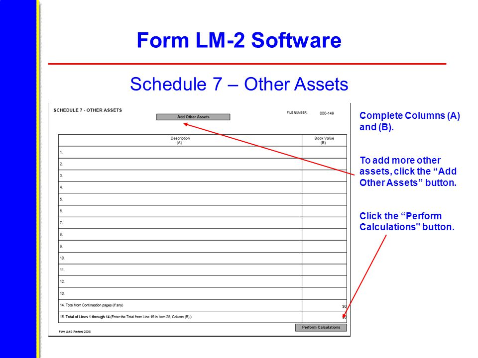 Form LM-2 Software Schedule 7 – Other Assets Complete Columns (A) and (B).