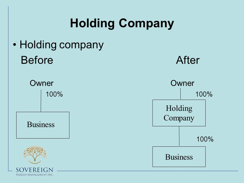 Holding Company Before After Owner Owner 100% 100% 100% Business Holding Company Business Holding company