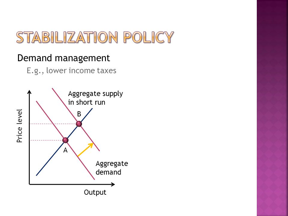  To improve primary balance  Raise and reform revenue Raise taxes and fees Reform revenue collection by levying efficient taxes and fees E.g., pollution fees rather than income taxes Improve tax administration  Reduce and reform expenditure Emphasize efficiency Avoid waste
