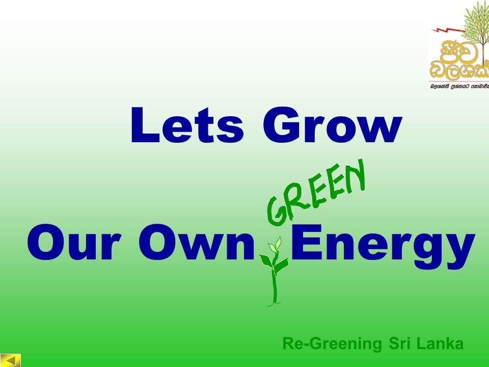 Re-Greening Sri Lanka