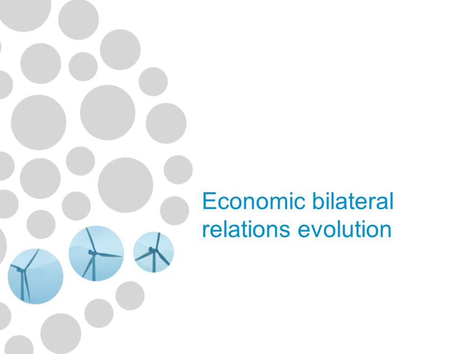 Economic bilateral relations evolution