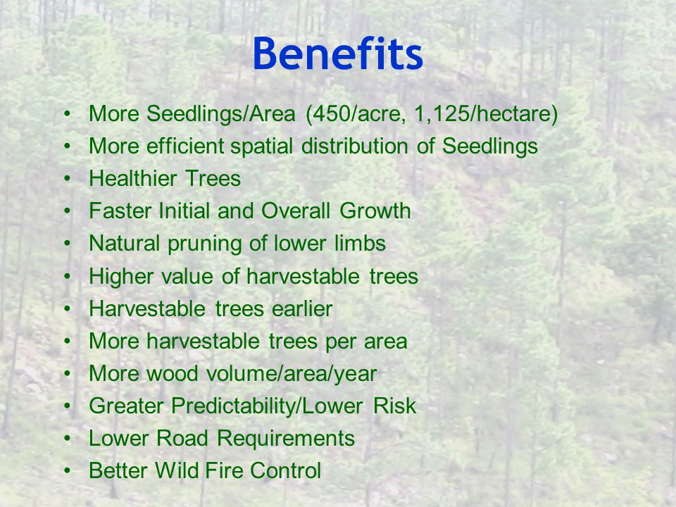 Benefits More Seedlings/Area (450/acre, 1,125/hectare) More efficient spatial distribution of Seedlings Healthier Trees Faster Initial and Overall Growth Natural pruning of lower limbs Higher value of harvestable trees Harvestable trees earlier More harvestable trees per area More wood volume/area/year Greater Predictability/Lower Risk Lower Road Requirements Better Wild Fire Control