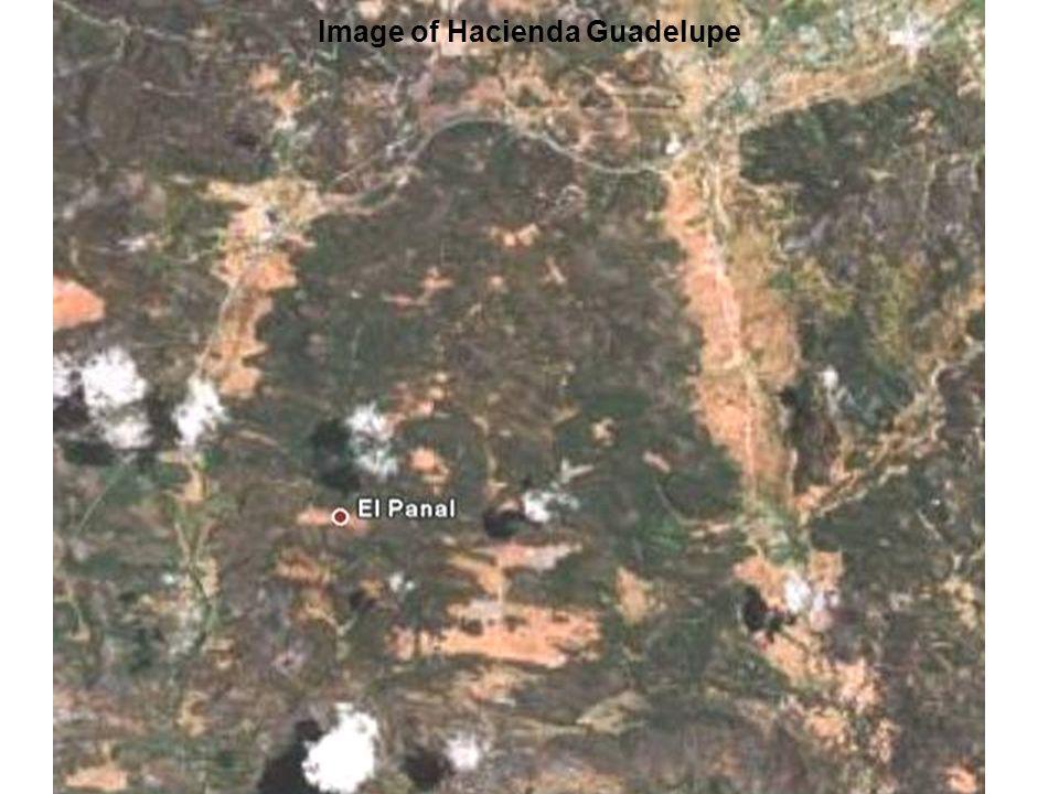 Image of Hacienda Guadelupe