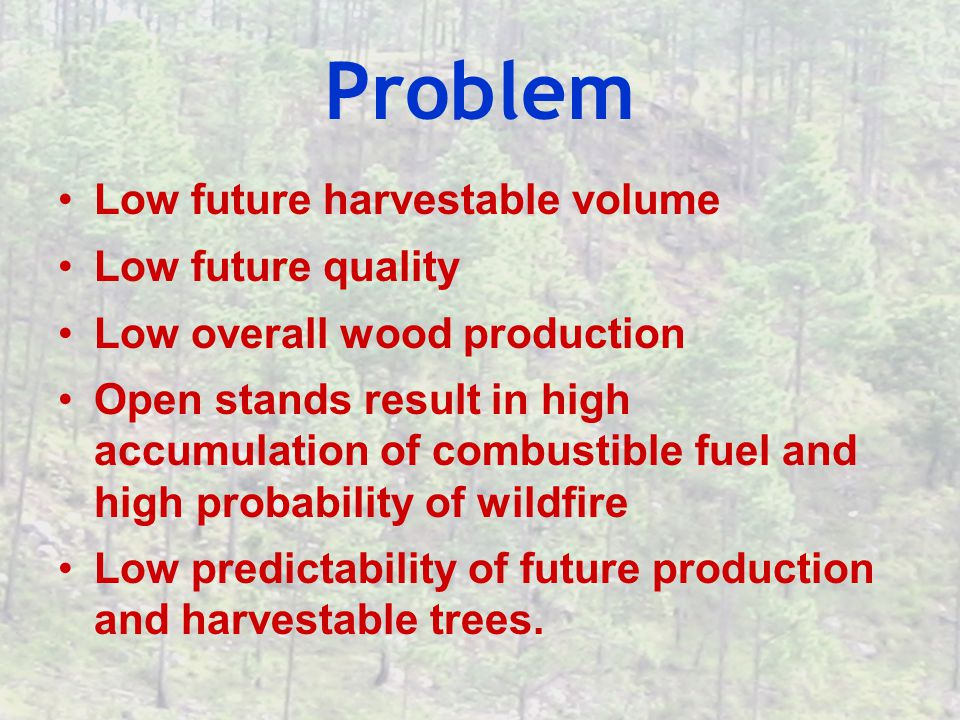 Problem Low future harvestable volume Low future quality Low overall wood production Open stands result in high accumulation of combustible fuel and high probability of wildfire Low predictability of future production and harvestable trees.