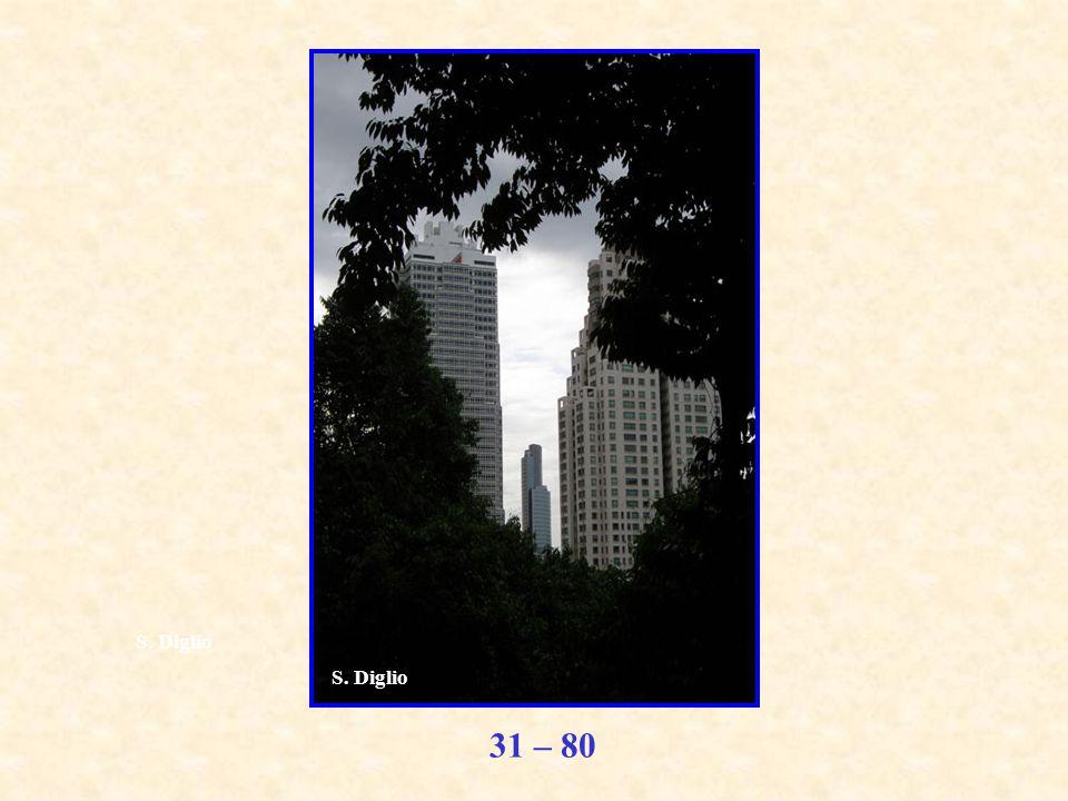 31 – 80 S. Diglio