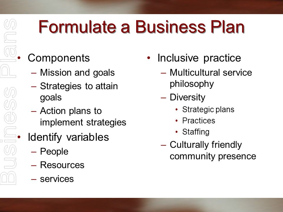 Formulate a Business Plan Components –Mission and goals –Strategies to attain goals –Action plans to implement strategies Identify variables –People –