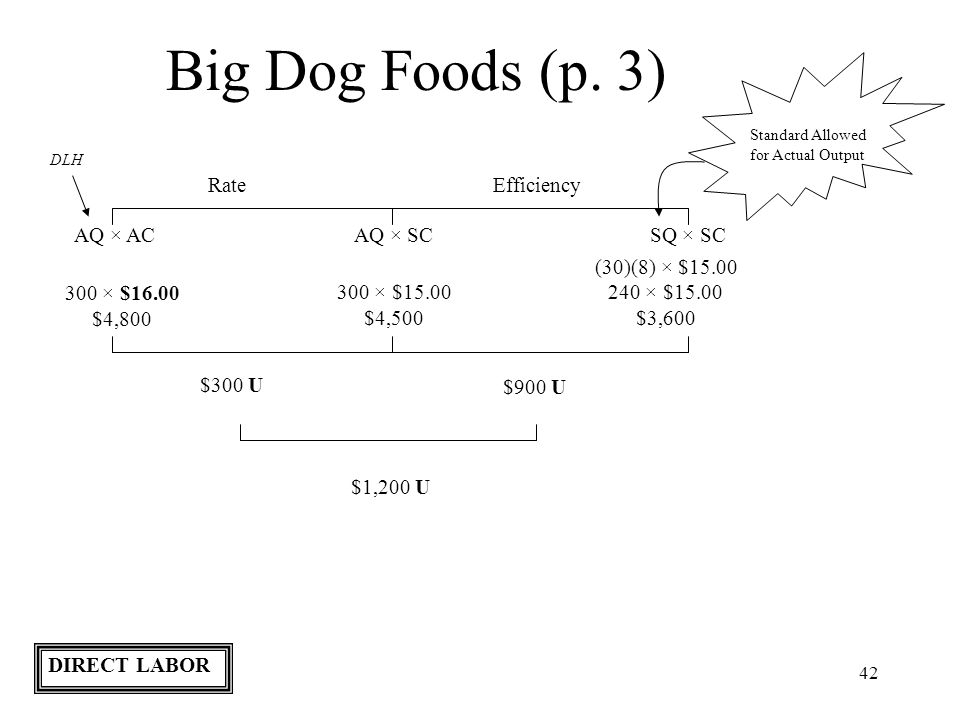 42 Big Dog Foods (p. 3) Standard Allowed for Actual Output RateEfficiency AQ × ACAQ × SCSQ × SC DLH 300 × $16.00 $4,800 (30)(8) × $15.00 240 × $15.00