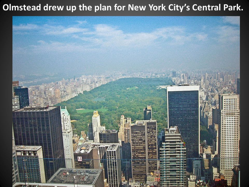 Olmstead drew up the plan for New York City's Central Park.