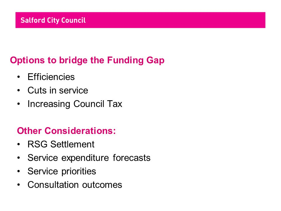 Options to bridge the Funding Gap Efficiencies Cuts in service Increasing Council Tax Other Considerations: RSG Settlement Service expenditure forecasts Service priorities Consultation outcomes